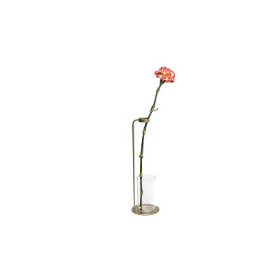 Glass vase with brass stainless steel suport - Flower